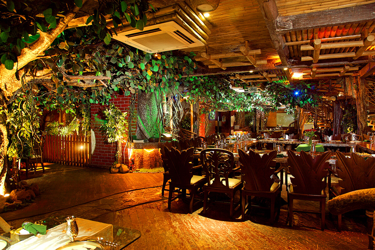 North Indian Forest Theme Restaurant In Hyderabad Banjara